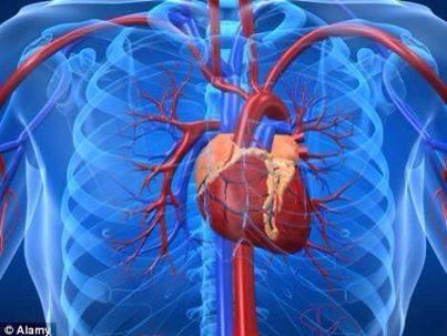 Rối loạn thần kinh tim